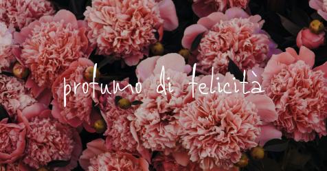 fiori rosa con scritta profumo di felicità